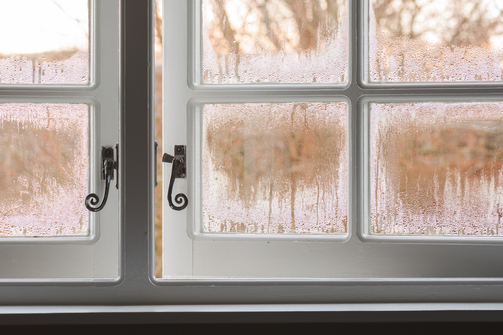 Condensation: Why It Happens and What It Means